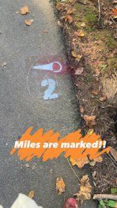 Silver Comet Races 2021 Half & Full Marathon Course Markings